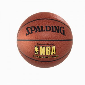 Spalding Indoor Outdoor Basketball NBA Tack Soft Pro DBB